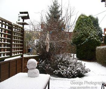 snowman in the backyard
